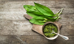 wild-ramps-recipes-and-uses