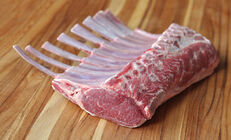 Rack of Lamb, Frenched (Australian)