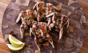 herb-grilled-quail-recipe