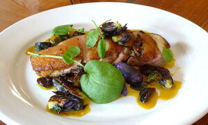 duck-breast-with-saffron-onions-raisins-and-purple-brussels-recipe