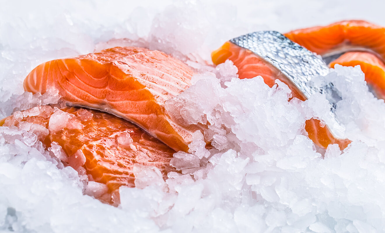fresh-or-frozen-fish-facts