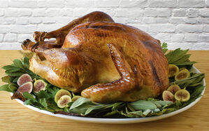easy-dry-brined-roast-turkey-recipe