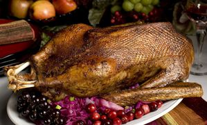 alsatian-style-roast-goose-with-foie-gras-and-chestnuts-recipe