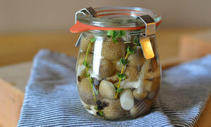 pickled-organic-wild-mushrooms-recipe