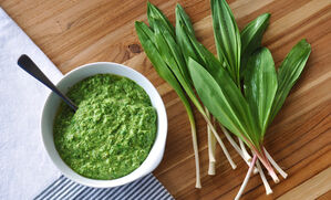 ramp-pesto-recipe