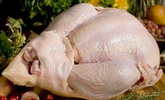 best-turkey-goose-and-poultry-for-the-holidays