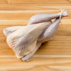 Guinea Hen, Whole