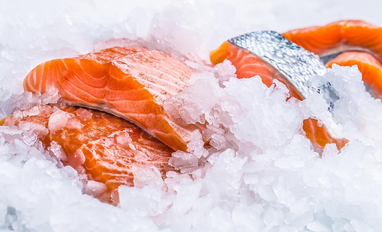 Fresh vs. Frozen Fish: Which is Best?
