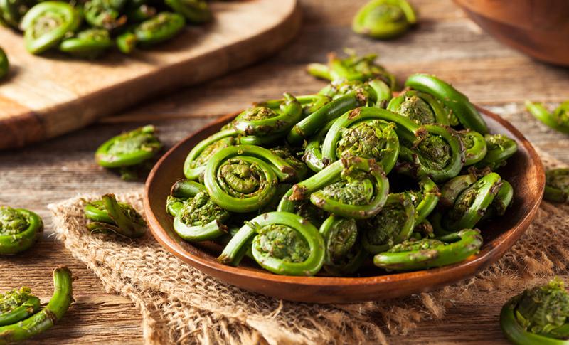 Image result for fiddlehead fern recipe