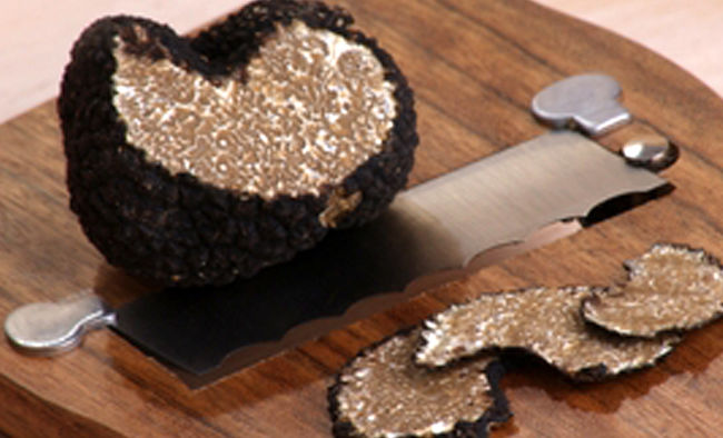 Black Truffles - Our Products – Dartagnan.com