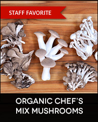 Buy Organic Wild Mushrooms