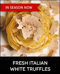 Buy Fresh Italian White Truffles