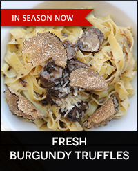 Buy Fresh Burgundy Truffles